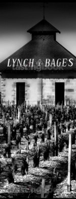 Red wine, Chateau Lynch-Bages 1952