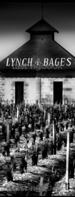 Red wine, Chateau Lynch-Bages 1937