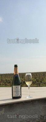 Sparkling wine, Sélection Brut NV (10's)