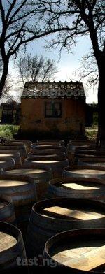 Red wine, Sassicaia 2008