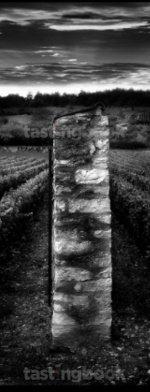 White wine, Montrachet 2002